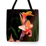 Orange Gladiolus Tote Bag