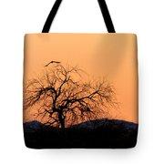 Orange Glow Sunset In The Desert Tote Bag
