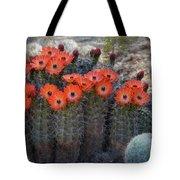 Orange Hedgehog Patch  Tote Bag