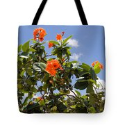 Orange Hibiscus With Fruit On The Indian River In Florida Tote Bag