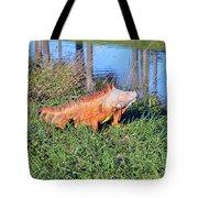 Orange Iguana Tote Bag