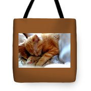 Orange Kitten Sleeping In Silk And Satin Tote Bag