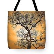 Orange Leopard Tote Bag