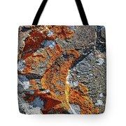 Orange Lichen Tote Bag