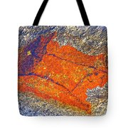 Orange Lichen Tote Bag
