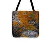 Orange Lichen On Granite Tote Bag