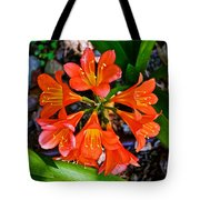 Orange Trumpet Flowers At Pilgrim Place In Claremont-california Tote Bag