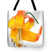 Orange Lily No 3 Tote Bag