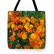 Orange Margarita Daisy Tote Bag