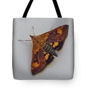 Orange Mint Moth - Pyrausta Orphisalis Tote Bag