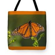 Orange Monarch Tote Bag