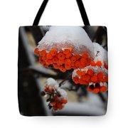 Orange Mountain Ash Berries Tote Bag