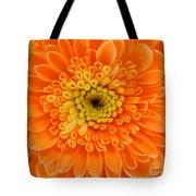Orange Mum In Detail Tote Bag