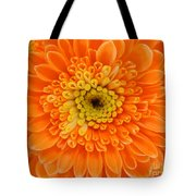Orange Mum In Detail Tote Bag