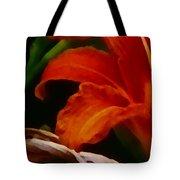 Orange Opening Tote Bag