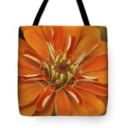 Orange Orange Orange Tote Bag