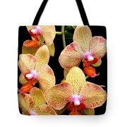 Orange Orchid Phalaenopsis Tote Bag