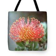 Orange Pincushion Protea Tote Bag