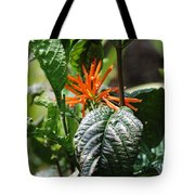 Orange Plants Tote Bag