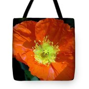 Orange Pop Photograph Tote Bag