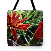 Orange Power Tote Bag
