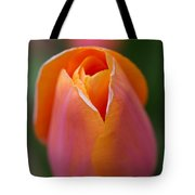 Orange Raspberry Sherbet Tulip Tote Bag
