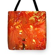 Orange Red Fall Leaves Autumn Tree Art Baslee Troutman Tote Bag