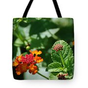 Orange  Red Flowers Tote Bag