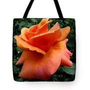 Orange Rose 1 Tote Bag