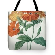 Orange Rose Campion Tote Bag