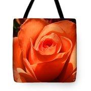 Orange Rose Photograph Tote Bag