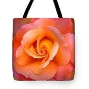 Orange Rosebud Highlight Tote Bag