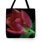 Orange Ruby Tulip Tote Bag by Tracy Hall