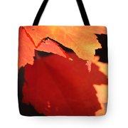 Orange Shadows Tote Bag