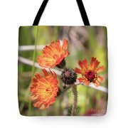 Orange Small Flowers With Buds Tote Bag