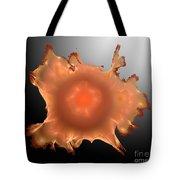Orange Something.b. Tote Bag