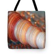 Orange Spiral Shell Tote Bag