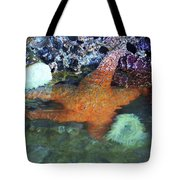 Orange Starfish Tote Bag