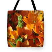 Orange Stars Tote Bag