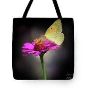 Orange Sulphur Butterfly Portrait Tote Bag
