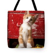 Orange Tabby Kitten In Red Drawer  Tote Bag