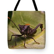 Orange Tipped Antennae Tote Bag