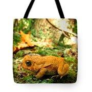 Orange Toad Tote Bag