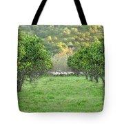 Orange Trees And Sheep Flock Tote Bag