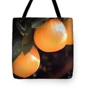 Orange Trio Tote Bag