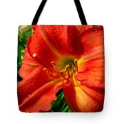 Orange Trumpeting Lily Tote Bag