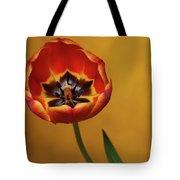 Orange Tulip 2 Tote Bag