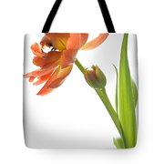 Orange Tulip Tote Bag