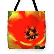 Orange Tulip Flowers In Spring Garden Tote Bag