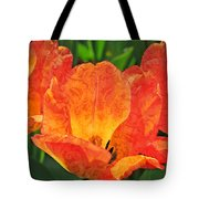 Orange Tulips With Brocade Tote Bag